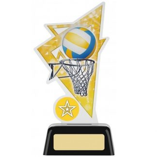*NEW* Acrylic Netball Trophy With Own Logo Option- 2 sizes - PK197